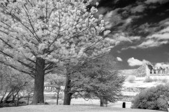 portarthur-tasmania-historic-site-infrared-24213